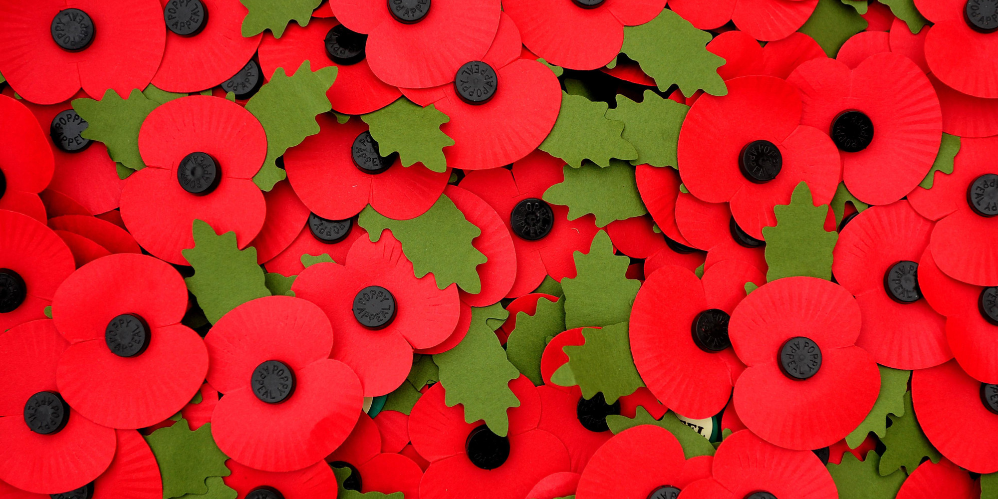 /images/upload/blog/1646/1646_o-REMEMBRANCE-POPPY-facebook.jpg